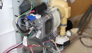 Picon-dishwasherMotor300