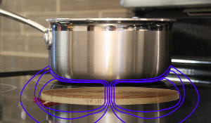 Picon-inductioncook300