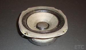 Picon-speaker300